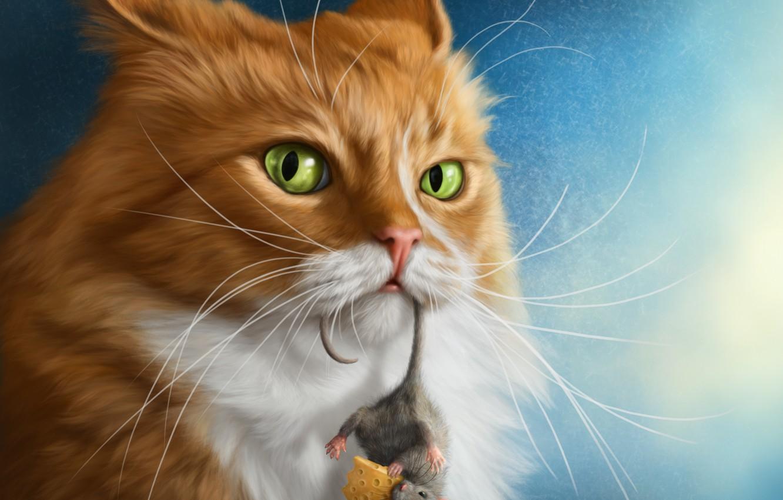Фото обои кот, взгляд, сыр, мышонок