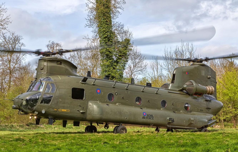 Фото обои трава, деревья, поляна, Boeing, вертолёт, Vertol CH-47 HC.4 Chinook ZA713-14