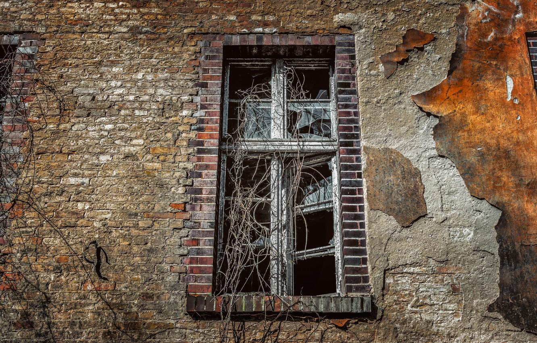 Фото обои стены, окна, кирпич, старый, фасад, разбитые стёкла