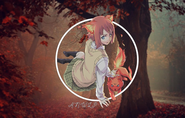 Фото обои лес, кот, девушка, аниме, madskillz, огноль