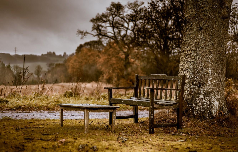 регулярно картинки скамейка и дождь зависимости пожелания, можете