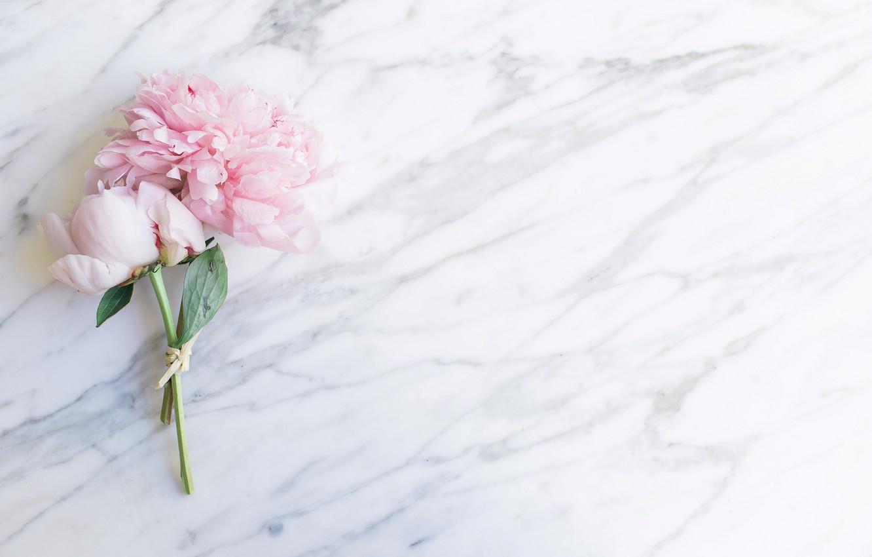 Фото обои цветы, букет, мрамор, pink, flowers, пионы, peonies, tender, marble