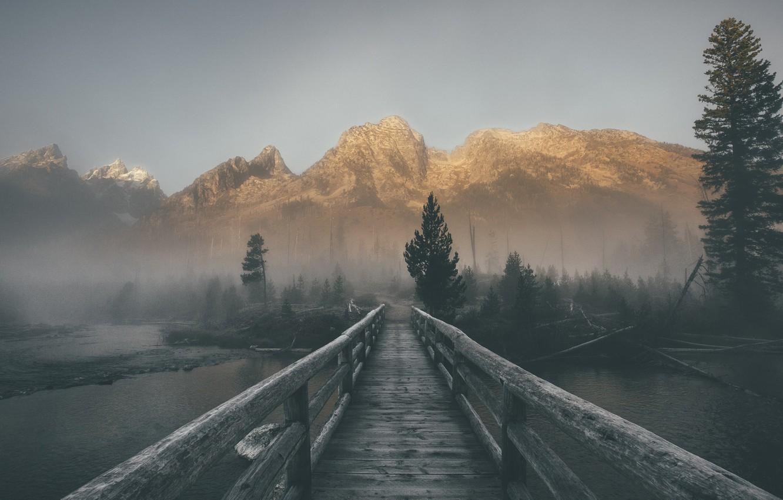 Фото обои небо, деревья, горы, мост, туман, река, ели, сосны