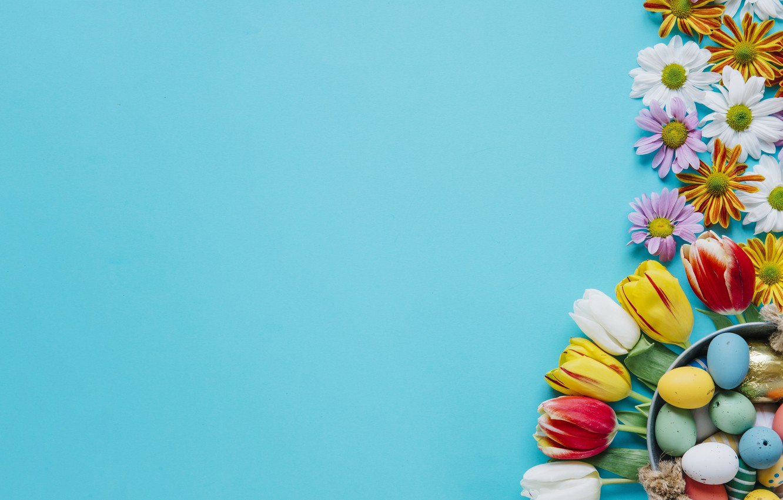 Фото обои Цветы, Тюльпаны, Пасха, Яйца, Фон, Праздник, Хризантемы