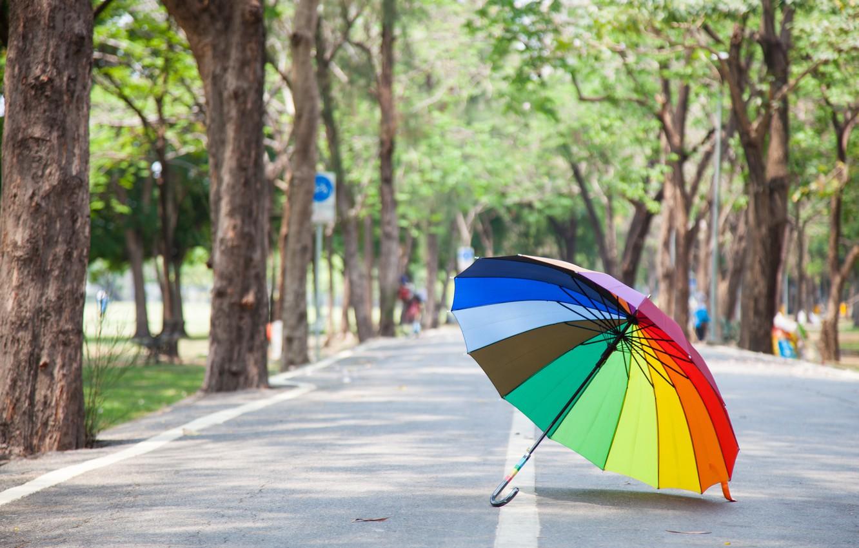 Фото обои дорога, лето, деревья, парк, радуга, зонт, colorful, rainbow, summer, аллея, umbrella, park