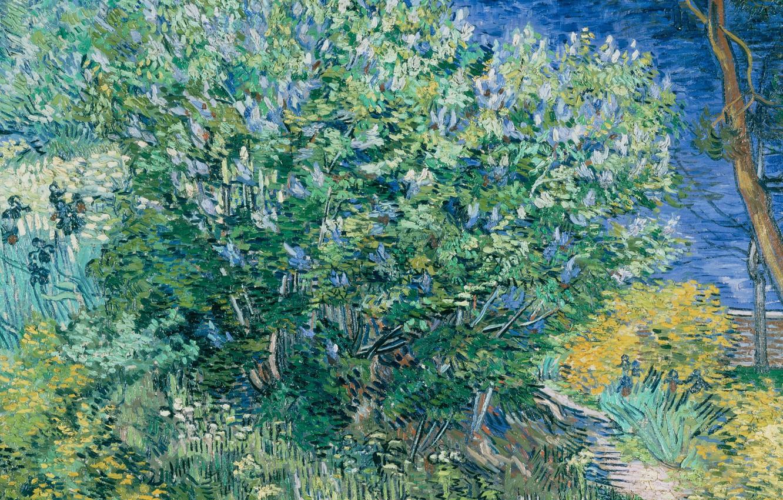 Фото обои пейзаж, картина, Vincent Willem van Gogh, Винсент ван Гог, Куст Сирени