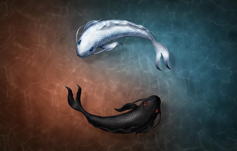 Фото обои white, black, rendering, digital art, fish, symbols, Yin and Yang