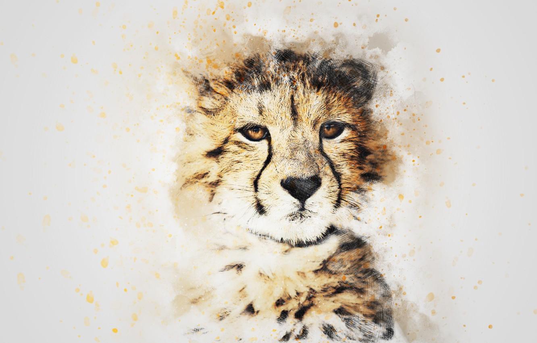 Фото обои взгляд, морда, картина, акварель, леопард