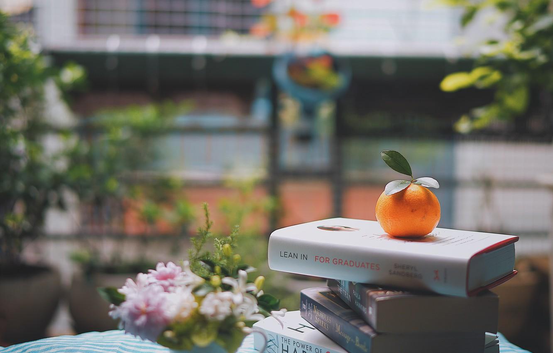 Фото обои цветы, улица, книги, апельсин