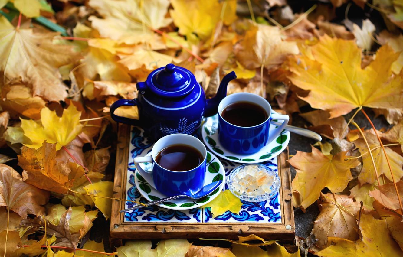 осень листья чай