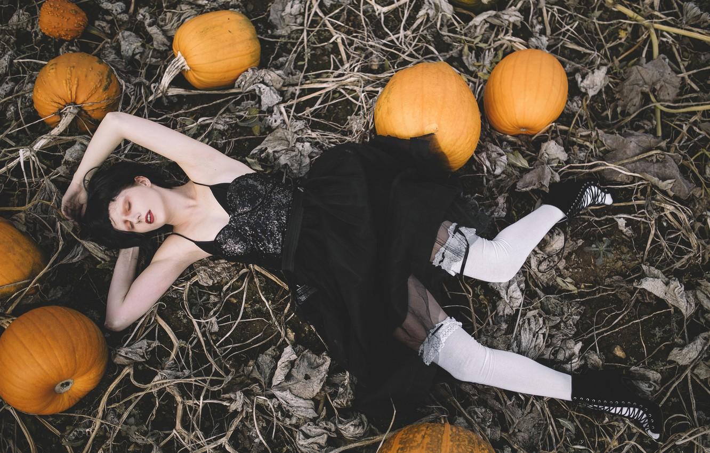 Фото обои поле, девушка, поза, ситуация, чулки, платье, тыквы