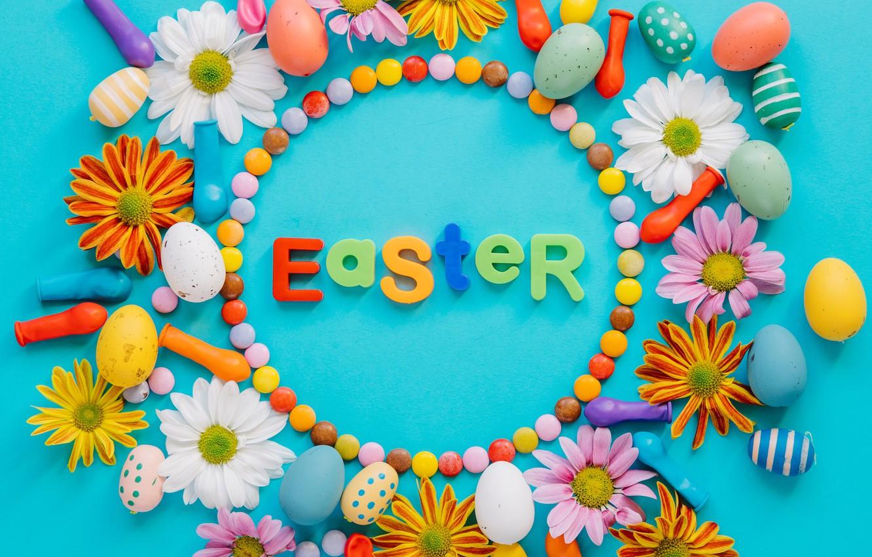 Фото обои цветы, ромашки, весна, colorful, Пасха, тюльпаны, flowers, tulips, spring, Easter, eggs, decoration, Happy, яйца крашеные