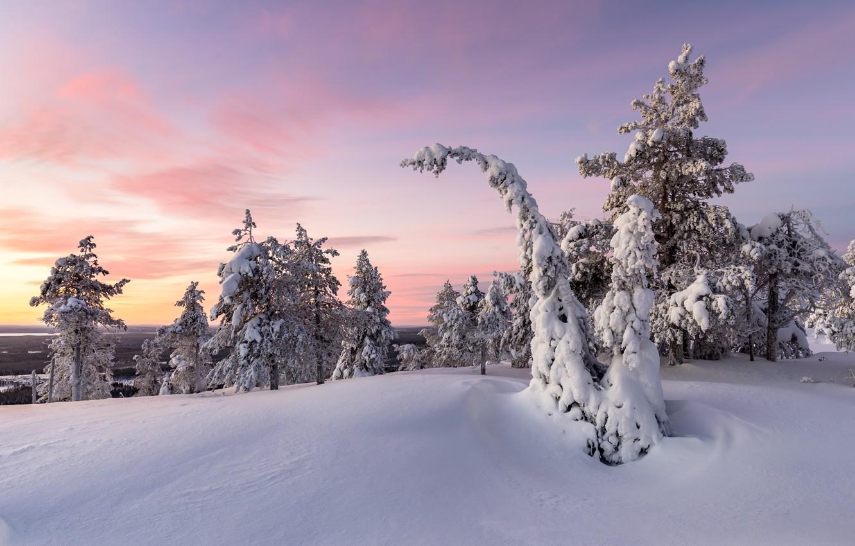 Фото обои зима, снег, закат