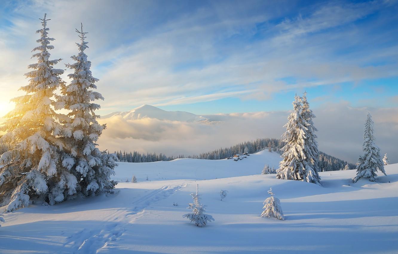 Фото обои зима, лес, небо, солнце, облака, лучи, снег, пейзаж, горы, холмы, лыжня, красота, ели, склон, деревня, …