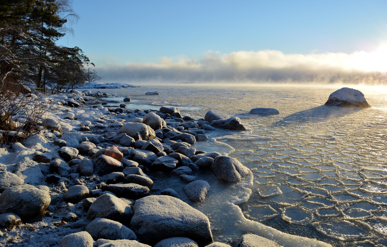 побережье балтийского моря фото беседки