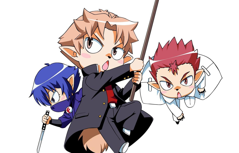 Фото обои атака, хвост, белый фон, друзья, ушки, Baka to Test to Shoukanjuu, три парня, чибики, Akihisa …