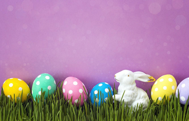 Фото обои трава, весна, Пасха, pink, spring, Easter, eggs, decoration, Happy, яйца крашеные