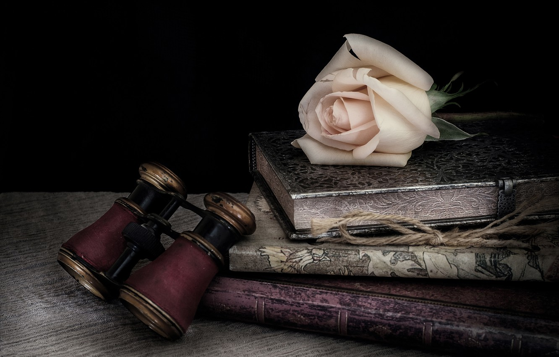 Фото обои стиль, роза, книги, бутон, бинокль