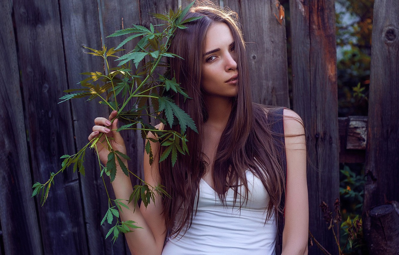 Обои для рабочего стола девушка и конопля выбрать сорт марихуаны