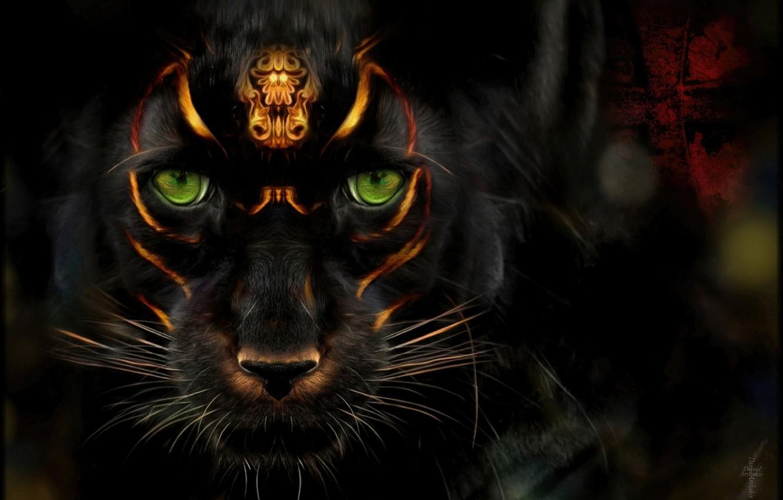 Фото обои черный, мистика, пантера, знаки