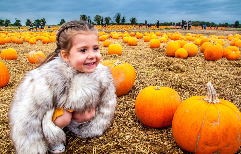 Фото обои поле, радость, улыбка, настроение, урожай, девочка, тыквы, шубейка