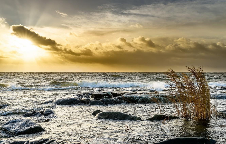 Фото обои море, свет, закат, берег