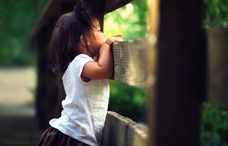 Фото обои забор, девочка, боке