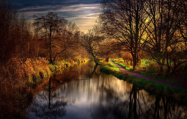 Фото обои природа, река, утро