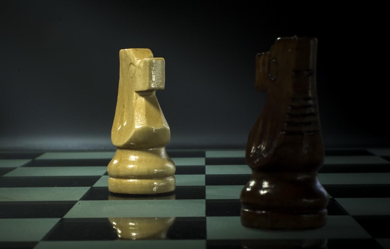 Фото обои конь, шахматы, фигура