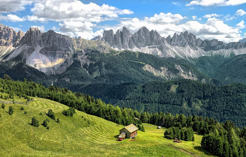 Фото обои зелень, лес, небо, трава, облака, деревья, горы, скалы, склон, Альпы, Италия, Bressanone