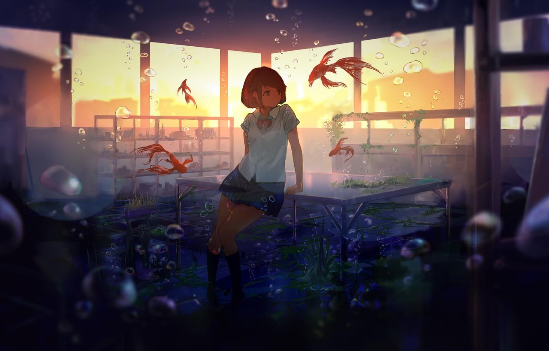 Фото обои рыбки, водоросли, закат, пузыри, стол, окна, класс, школьница, под водой