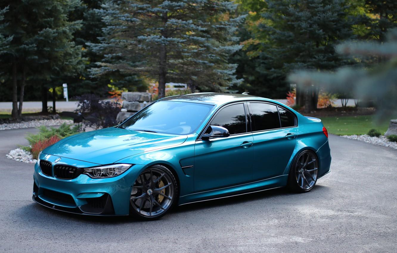 Фото обои BMW, Blue, Trees, F80, Sight