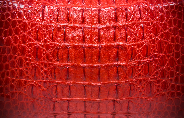 Обои Crocodile, Leather, Крокодил, фон, texture, кожа, Red, красньій. Текстуры foto 6