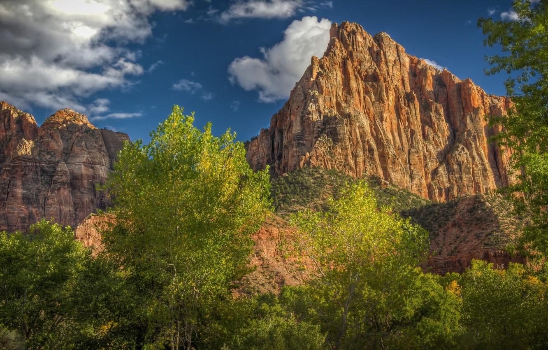Фото обои деревья, пейзаж, скала