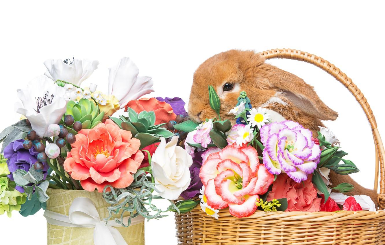 Фото обои цветы, корзина, кролик, Пасха, happy, rabbit, flowers, spring, Easter, eggs, bunny, decoration