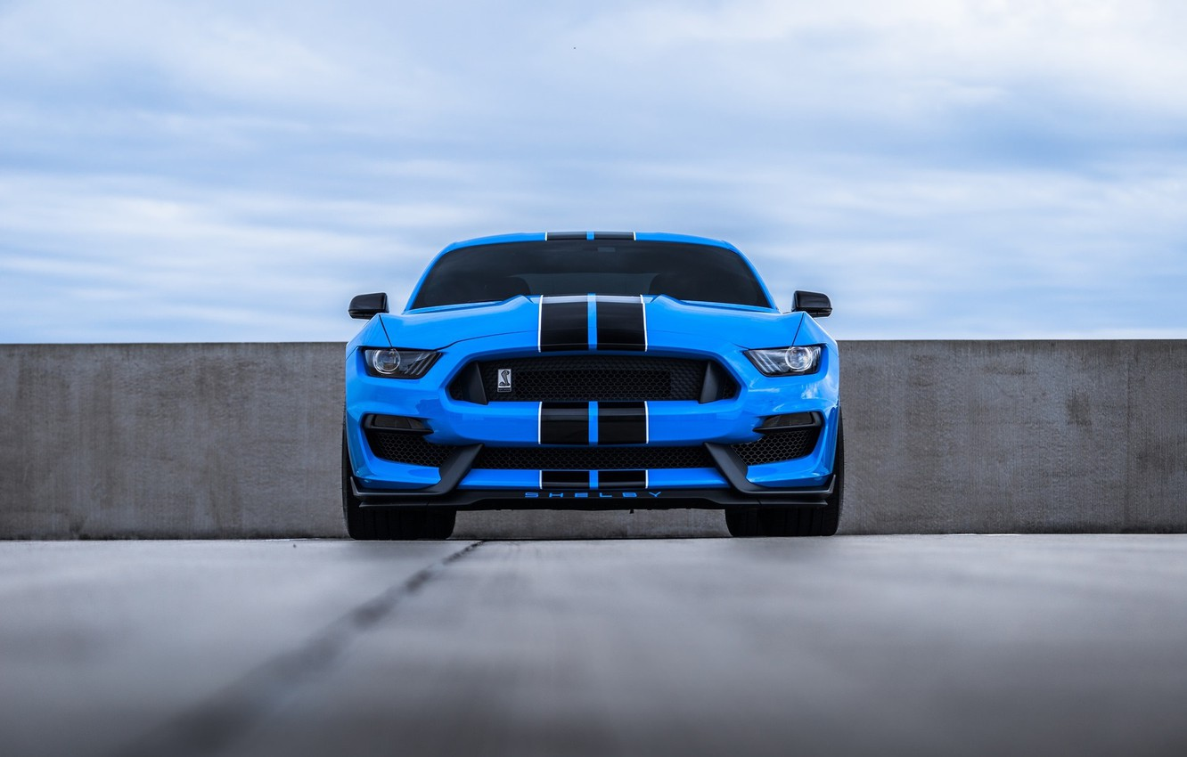 Фото обои Mustang, Ford, Blue, Front, Cobra, Face, Sight