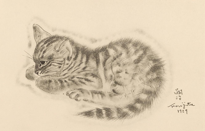Фото обои глаз, котёнок, задумался, 1929, Tsuguharu Foujita, Книга Кошек