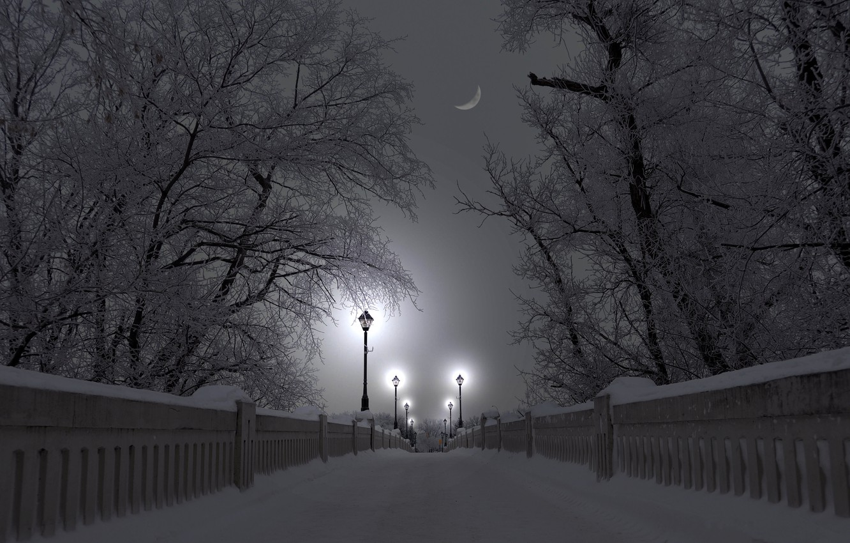Неконтрастная зима примеры фото зеленое место
