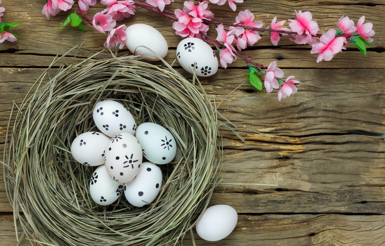 Фото обои цветы, корзина, яйца, весна, Пасха, wood, pink, blossom, flowers, spring, Easter, eggs, decoration, Happy, tender