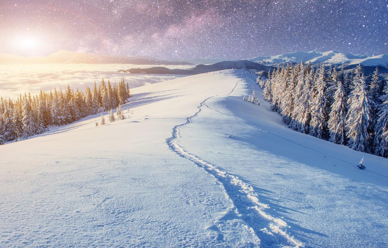 снежная тропинка фото зимние есть, как