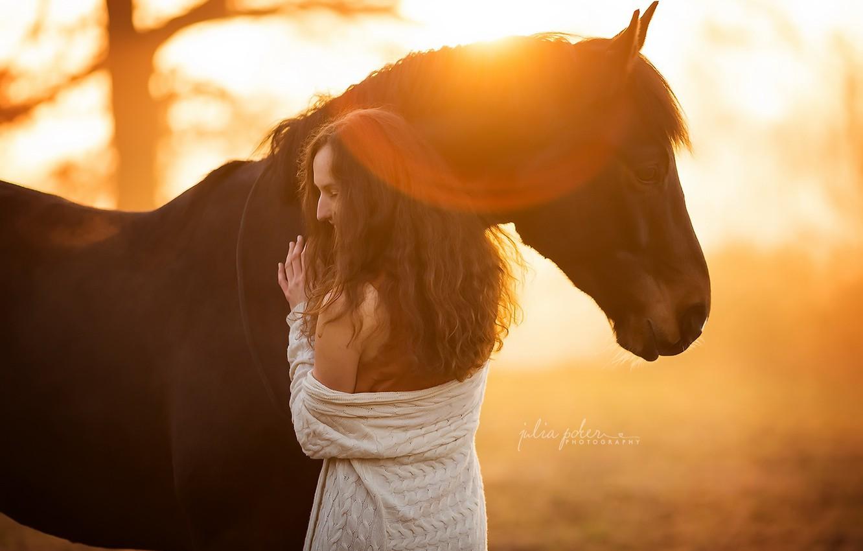 Фото обои девушка, свет, конь