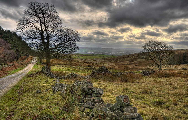 Фото обои дорога, поле, трава, облака, пасмурно, Британия, Walker Fold, Chaigley, Rose Cottage
