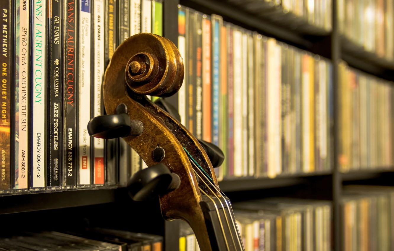 Фото обои струны, винт, гриф, музыкальный инструмент, фонотека