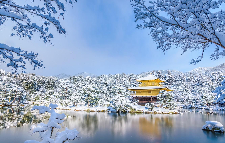 Фото обои зима, снег, деревья, пруд, парк, Япония, храм, Japan, Kyoto, Киото, Golden Pavilion, Золотой павильон, Kinkaku-ji, …