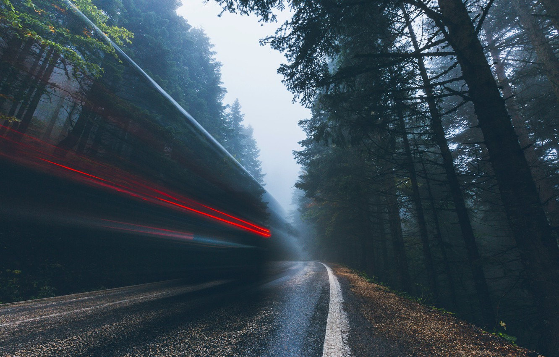 Фото обои дорога, лес, свет, природа, огни, выдержка
