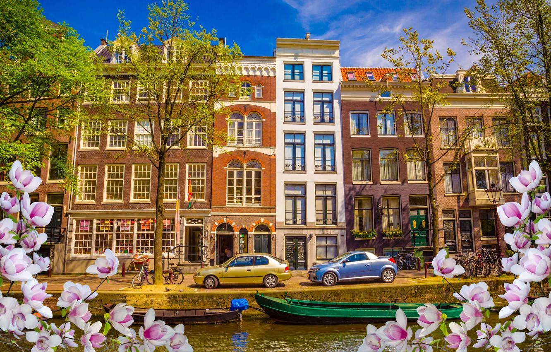 Фото обои река, весна, лодки, Амстердам, цветение, blossom, Amsterdam, flowers, old, spring, buildings, Netherlands, canal