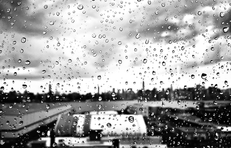 Черно белые картинки осень дождь