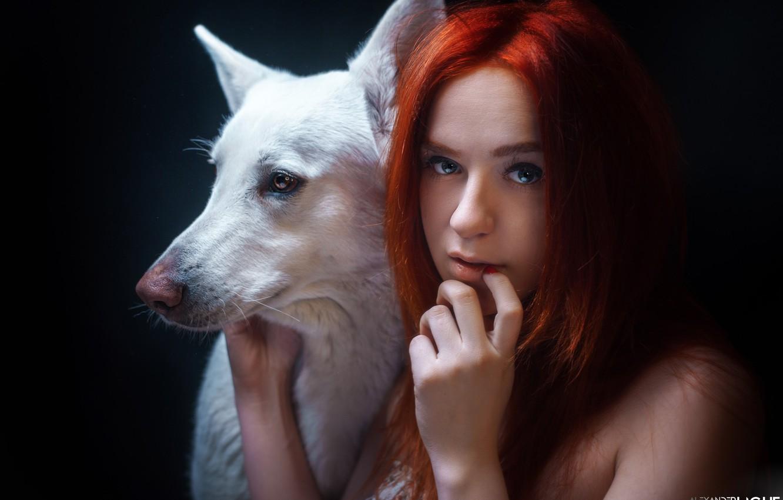 Фото обои взгляд, морда, лицо, рука, портрет, собака, рыжая, рыжеволосая, чёрный фон, Alexander Drobkov-Light, Мария Некрасова