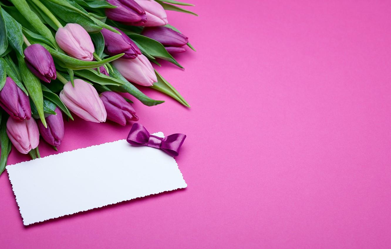 Поздравлению пасхой, фон с тюльпанами для поздравления