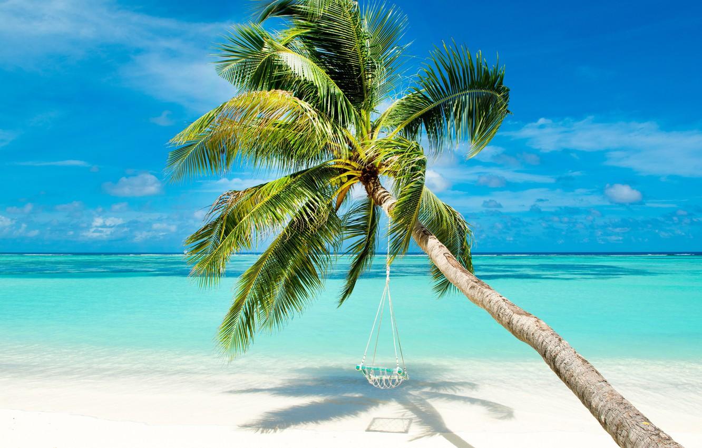 Фото обои море, пляж, природа, тропики, пальмы, берег, голубое небо